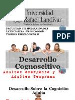 Desarrollo Cognoscitivo Tp