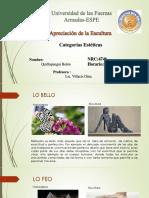 Categorias_EsteticasQuillupangui_Belen.pptx
