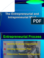 Entrepreneurial and Intrapreneurial Mind-3
