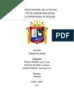 Peru Bolivia Tratados (Autoguardado)