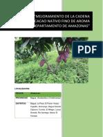 Proyecto cacao- entregable 02.docx
