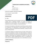 ENSAYO-DE-ELEMENTOS.docx