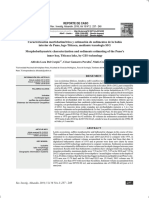 Caracterización morfométrica