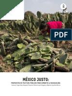Informe México-DAVOS-reducido.pdf