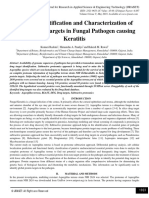 In Silico Identification and Characterization of Potent Drug Targets in Fungal Pathogen causing Keratitis