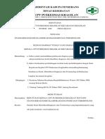 Sk Tentang Standarisasi Kode Klasifikasi Diagnosis Dan Terminologi