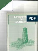 Vegetacio Montseny