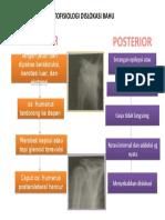 Patofisiologi Dislokasi Bahu