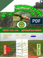 DOC-20180604-WA0001.pdf