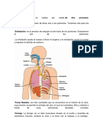 Resumen de Aparatos del cuerpo Humano (Biologia de Bachillerato)