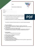 Guía Para La Confección Del Informe de Diagnóstico