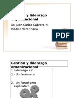 Gestión y Liderazgo Organizacional