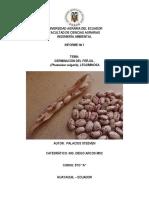 Formato de Informe Germinacion Del Frejol (Recuperado Automáticamente)