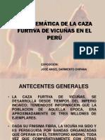 Problema de La Caza Furtiva Peru