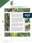 practicas agricolas.pdf