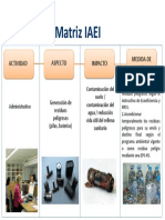 Resumen Matriz IAEI