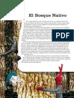 El Bosque Nativo