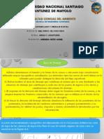 UNIVERSIDAD NACIONAL SANTIAGO ANTUNEZ DE MAYOLO.pptx