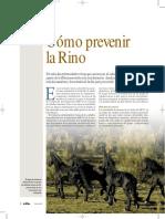 06_Como Prevenir La Rino-Trofeo