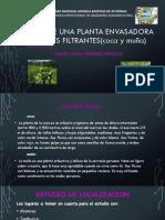 Diseño de Una Planta Envasadora de Mates Filtrante