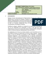 Informe Trimestral #3 Tayaquira