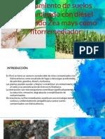 Contaminacion de Suelos (1)