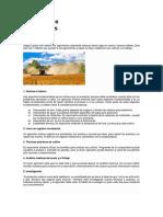 7 hábitos de agricultores exitosos.docx