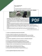 Guía-repaso-LC-coef-2-cuarto-básico
