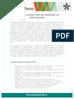 analisis_desarrollo_sistemas_informacion..pdf
