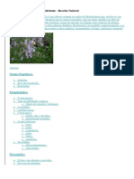 Propriedades de Ervas Medicinais(2)