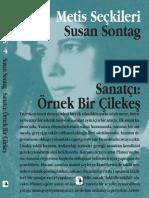 04. Susan Sontag - Sanatçı_ Örnek Bir Çilekeş