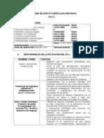 Formato paci 2015 2 BASICO.doc