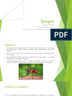 Dengue power point