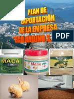 217530782-PLAN-DE-NEGOCIOS-DE-EXPORTACION.pdf
