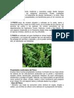 Plantas medicinales MIas