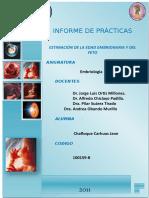 PRACTICA+Nº+02+-+Estimacion+de+la+edad+embrionaria