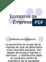 Introducción a la economía de empresas