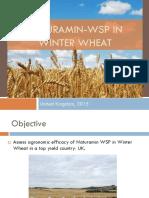 Naturamin-WSP ING Resultados Trigo V4