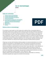 VISLUMBRANDO Las Lesiones Elementales en Dermatología