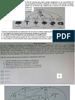 Formas 2018-2.pdf
