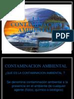 La Contaminacion Ambiental (1)