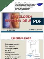 patologias malignas 1