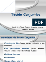 tecido_conjuntivo_atual