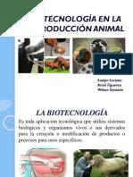 Biotecnología en La Reproducción Animal