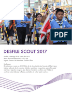 Desdile Scout 2017