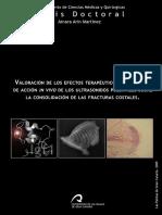 tesis_ultrasonidos_pulsatiles