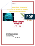 DONACION DE SANGRE DORA.docx