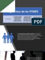Segmentos e Importancia de Las Mypes
