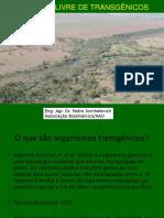 AREA LIVRE Transgenicos Reserva Biosferajunho 16