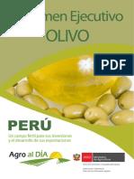 Cadena Olivo (1)